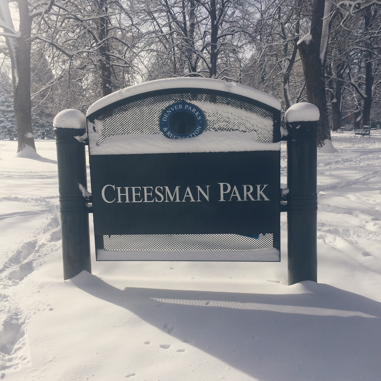 The History Behind Denver's Haunted Cheesman Park