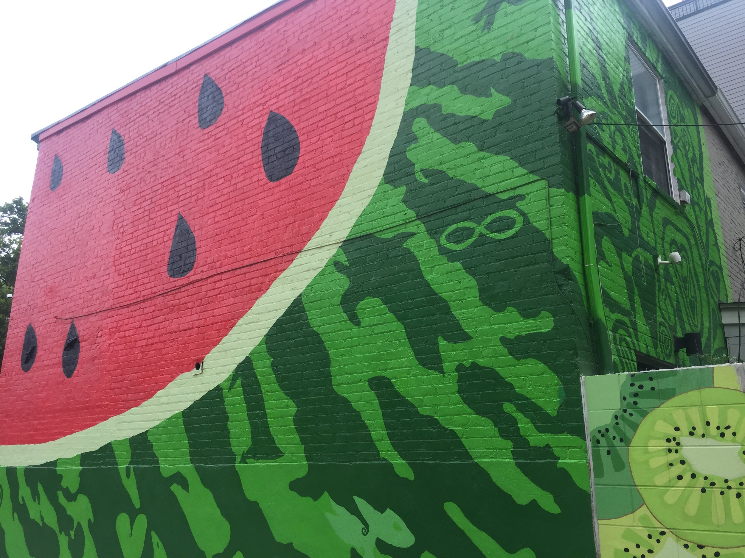 The Watermelon House, Washington D.C. | D.C. Best Instagram-Worthy Murals