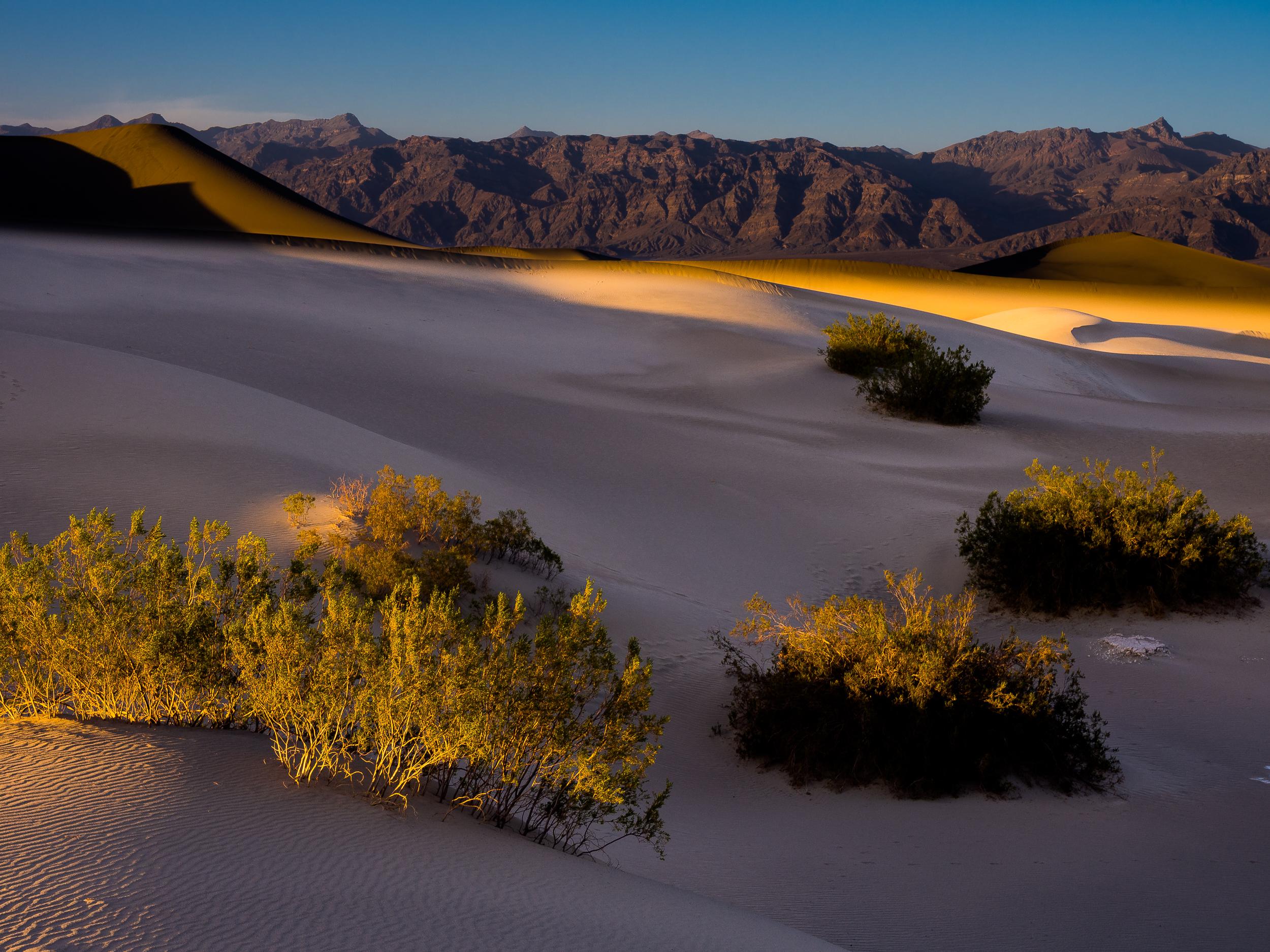 Death Valley Sand Dunes-60.jpg