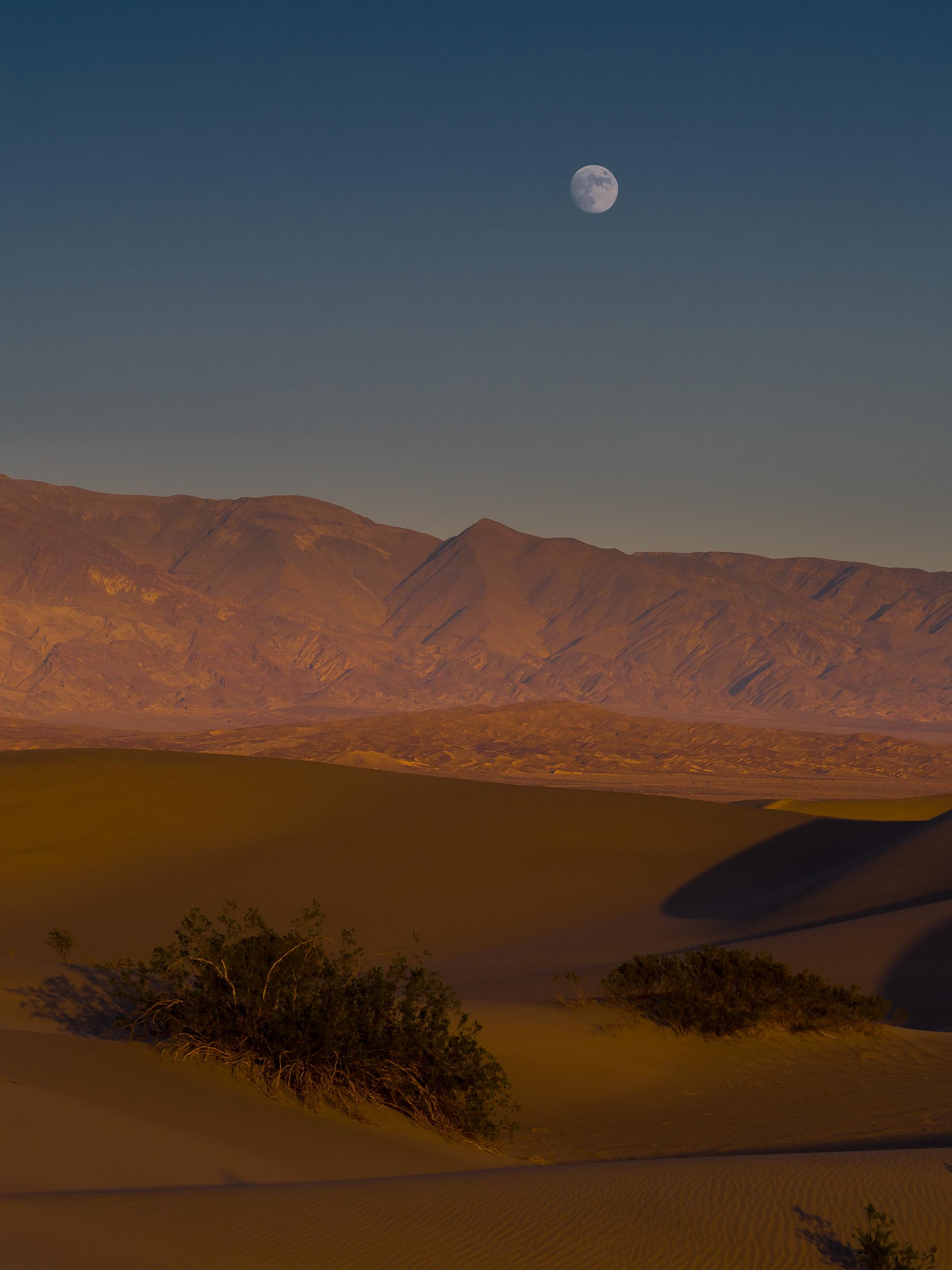Death Valley Sand Dunes-63.jpg