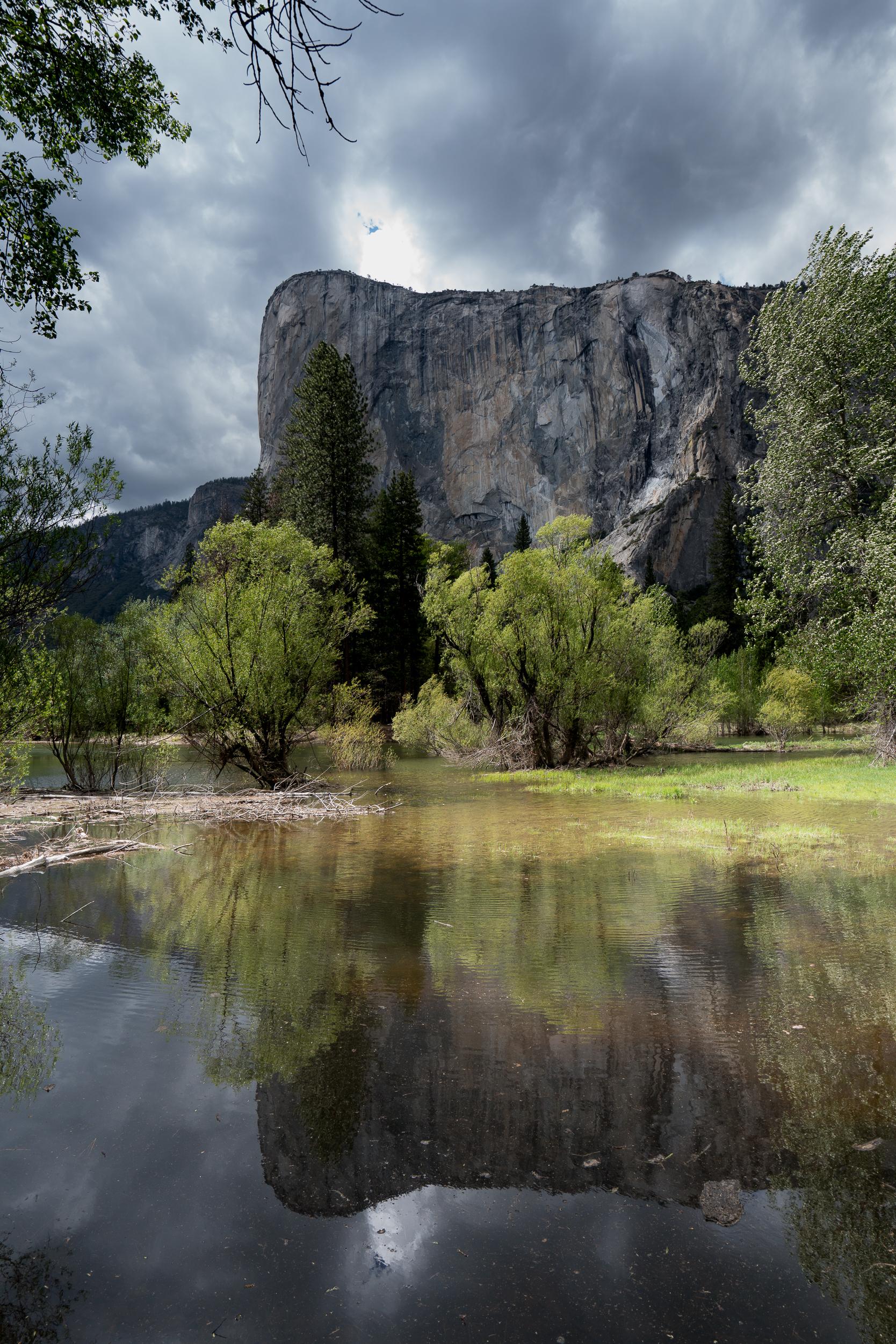 Yosemite 2018-91.jpg