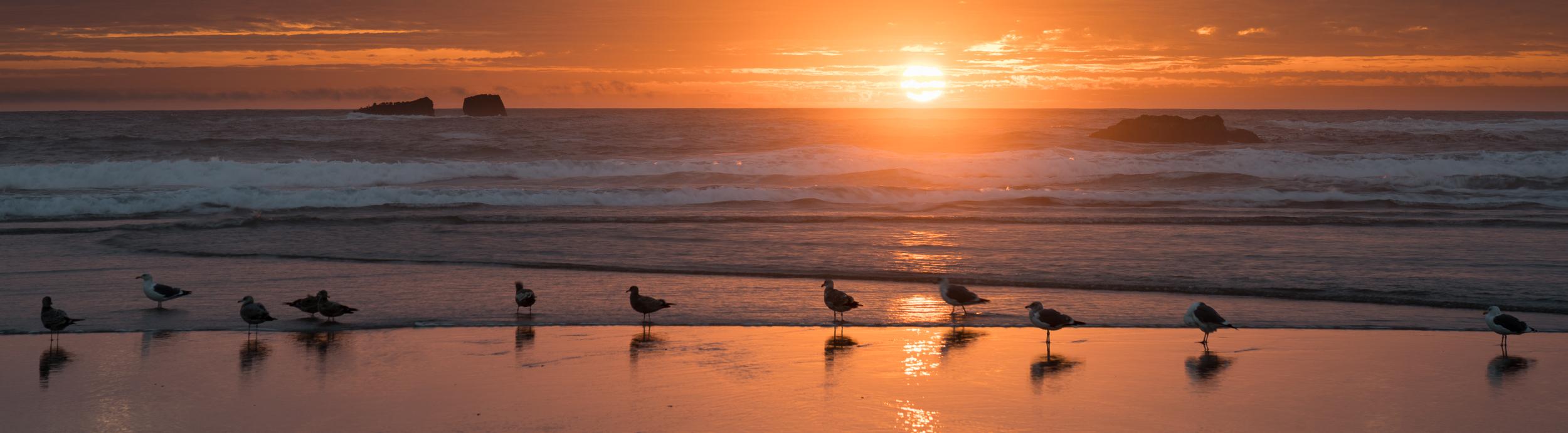 Bandon Beach Oregon-35.jpg