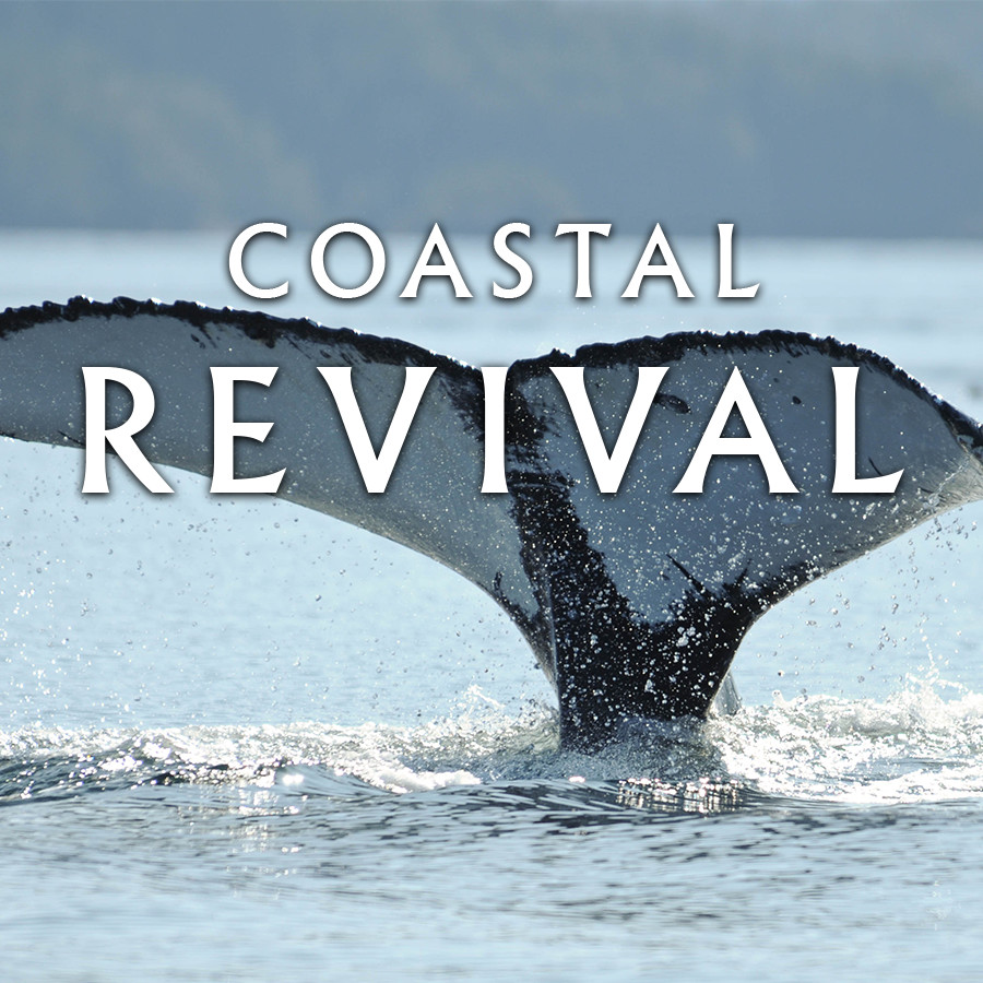 Coastal Revival (2015)   Meet the people who are using ecotourism to keep British Columbia's coast alive.   Learn More