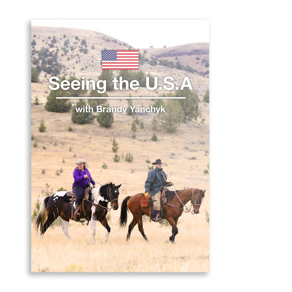 BYP-DVD-SEEINGUSA.jpg