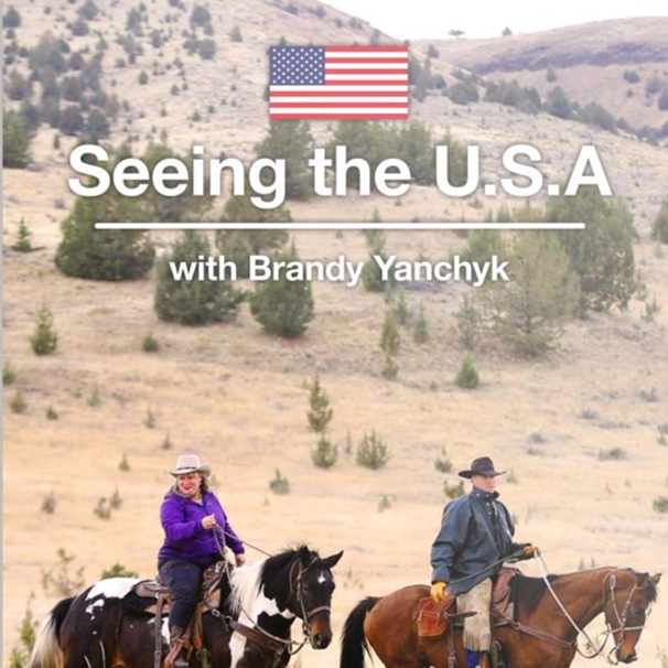 Seeing The USA (2019)    Seeing the USA  is a travel documentary series exploring iconic experiences in the United States of America.   Learn More