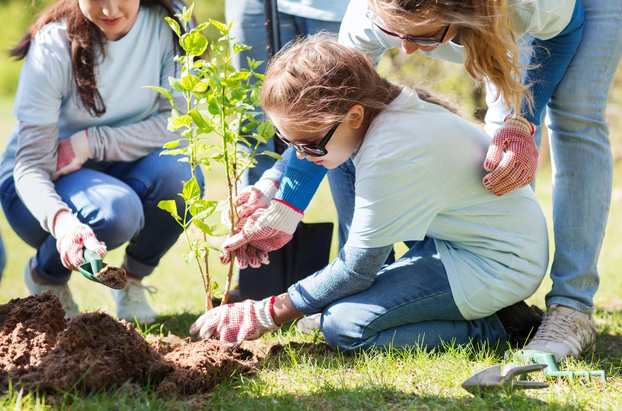 Planting tree-540108070.jpg