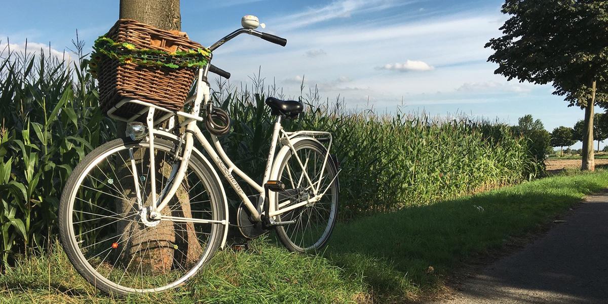 nature-sky-field-wheel-air-bicycle-1200-600.jpg