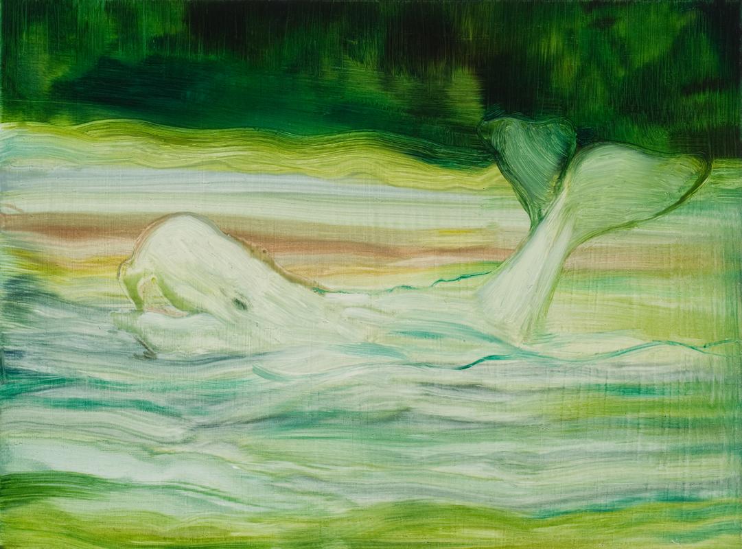 Beluga , Oil on board, 15 x 20cm, 2010
