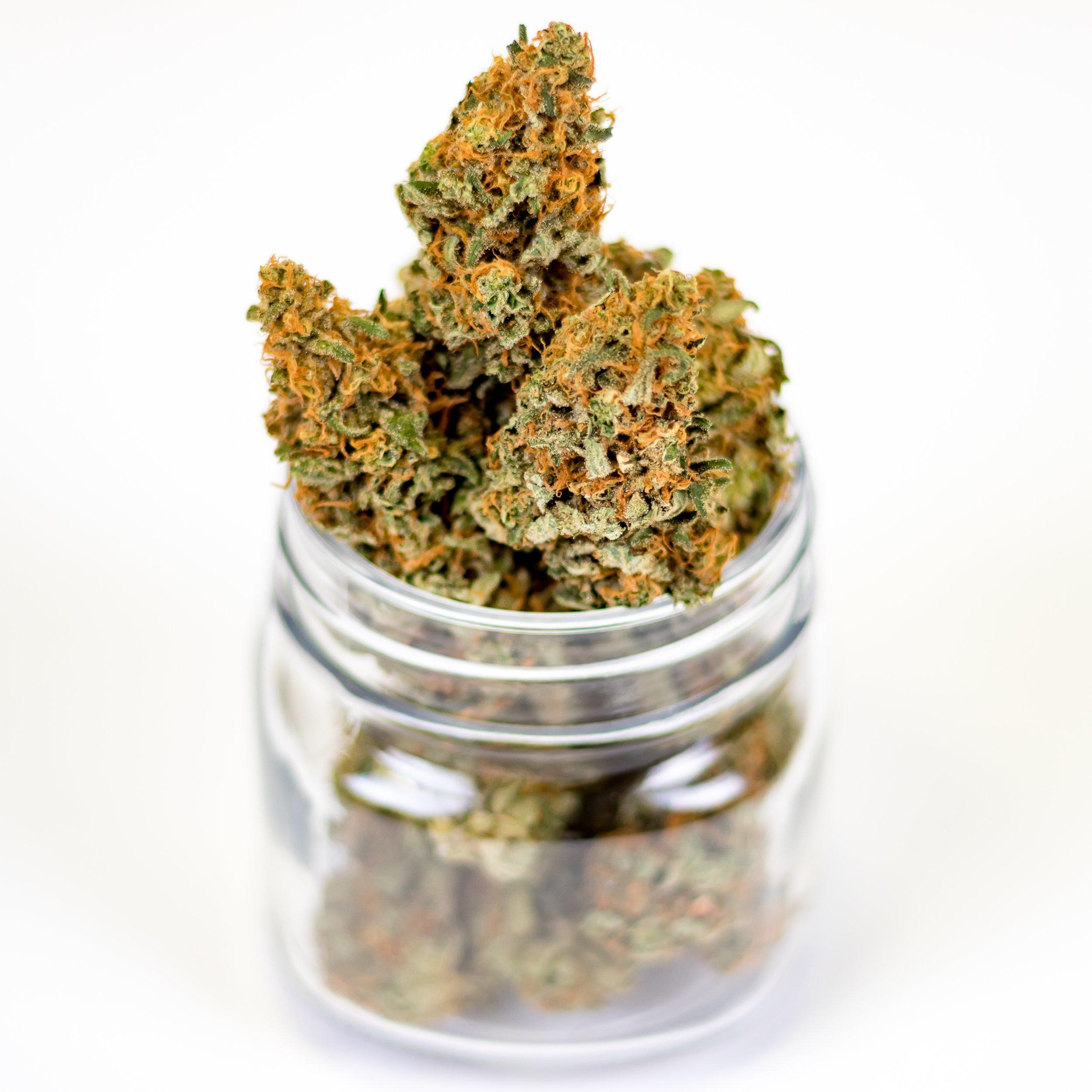 marijuana-3646055.jpg