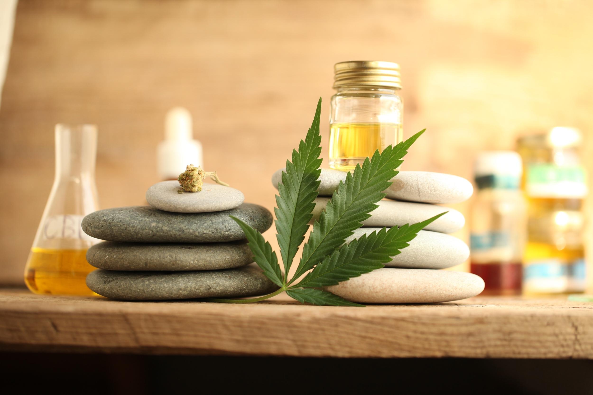 cannabis cbd product oil.jpg
