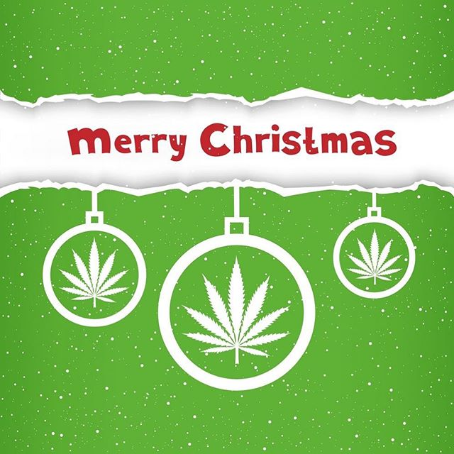 Merry Christmas to all! It's been an amazing year for Hemp! Hope your all in enjoy time with your loved ones and have an amazing time on this blessed day! #UseHemp . . . . . #BritishHemp #Hemp #HempLife #Organic #VeganLife #HempFoods #HempOil #HempChristmas #hempfarmers