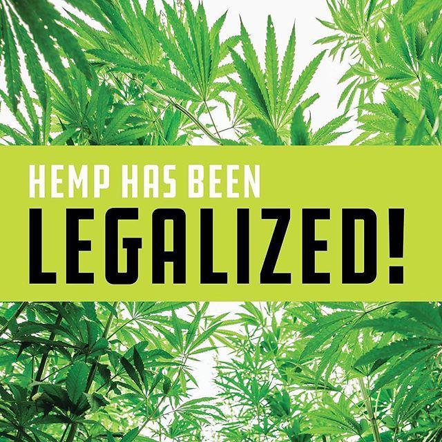 We've all been waiting for this moment! Hemp Legalisation in the US will create waves around the world and eventually reach the Uk! Big year for Hemp next year! #usehemp #britishhemp #hemplegalization #hemp #hemplife #hempseeds #hempfoods #hempfibres #hemphomes #sustainability #veganhemp #veganlife