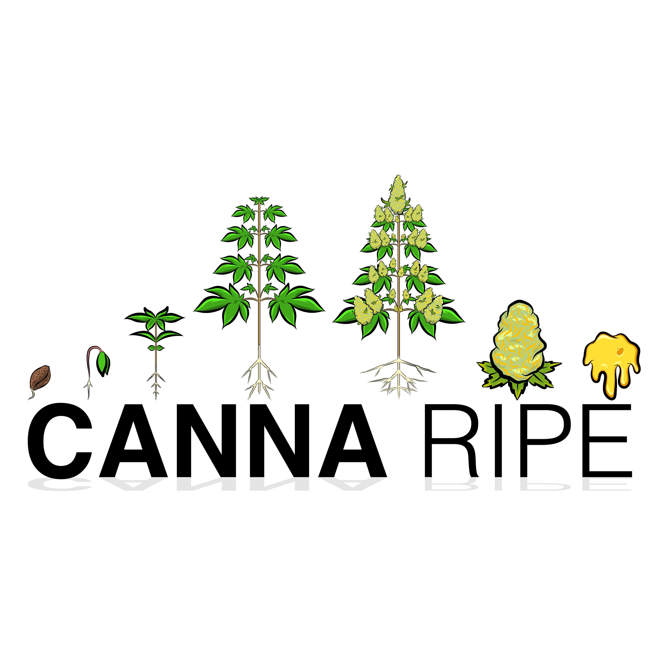 Canna Ripe