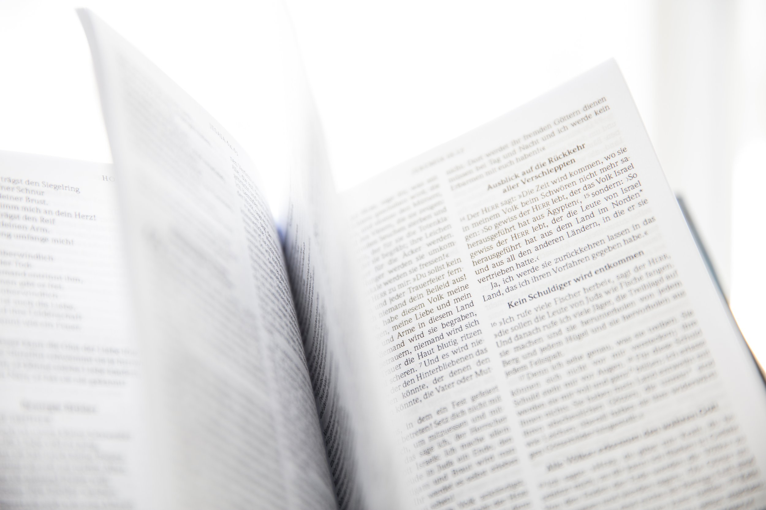 bible-blurred-background-book-954198.jpg