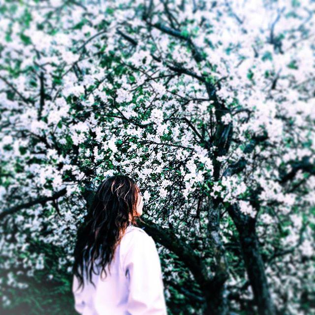 F L O W E R - P W R 🌸 . Spring is a magical source of inspiration . - - - - - - - - #photography #spring #flowers #mood #inspiration #naturephotography #naturelovers #picture #art #instart #light #lightroom #mothernature #nature #flowerstagram #instaday #pictureoftheday #shoot #beautiful #beautifulnature #instagood #picoftheday