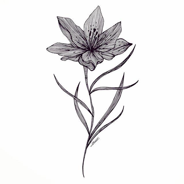 Fleur de Lys ⚜️. For a girl named Saoussen ✨ - - - - - - - - - - - - - - #artiste #handmade #art #deco #design #interior #lineart #illustration #illustrator #graphicdesign #artist #french #lyon #paris #illustrator #blackandwhite #flowers #photography #quality #picoftheday #work #flower #lines #details #linesart #mood #line #myart #tattoo #minimalism #photography