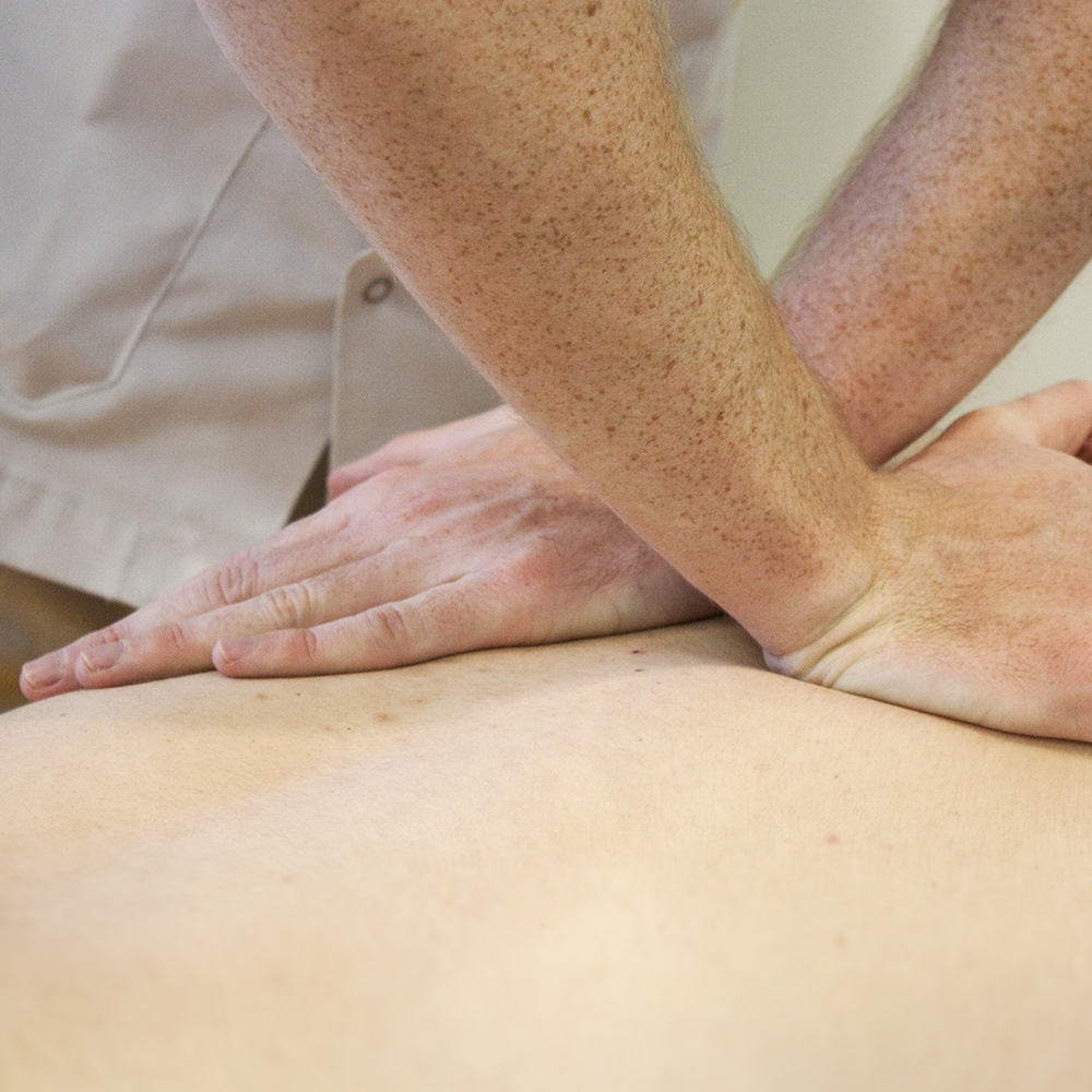 Fisioterapia -