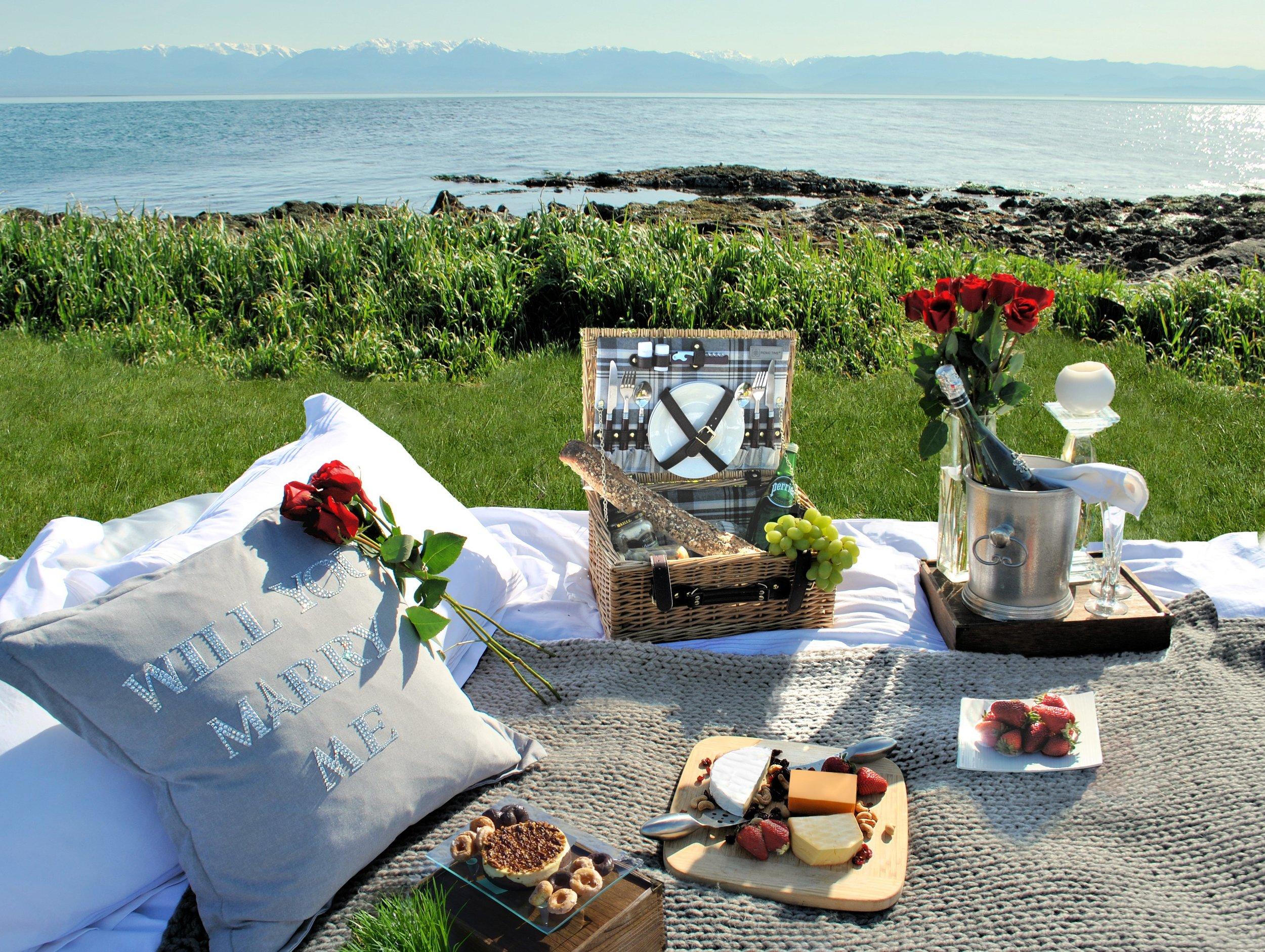 Romantic Picnic Marriage Proposal