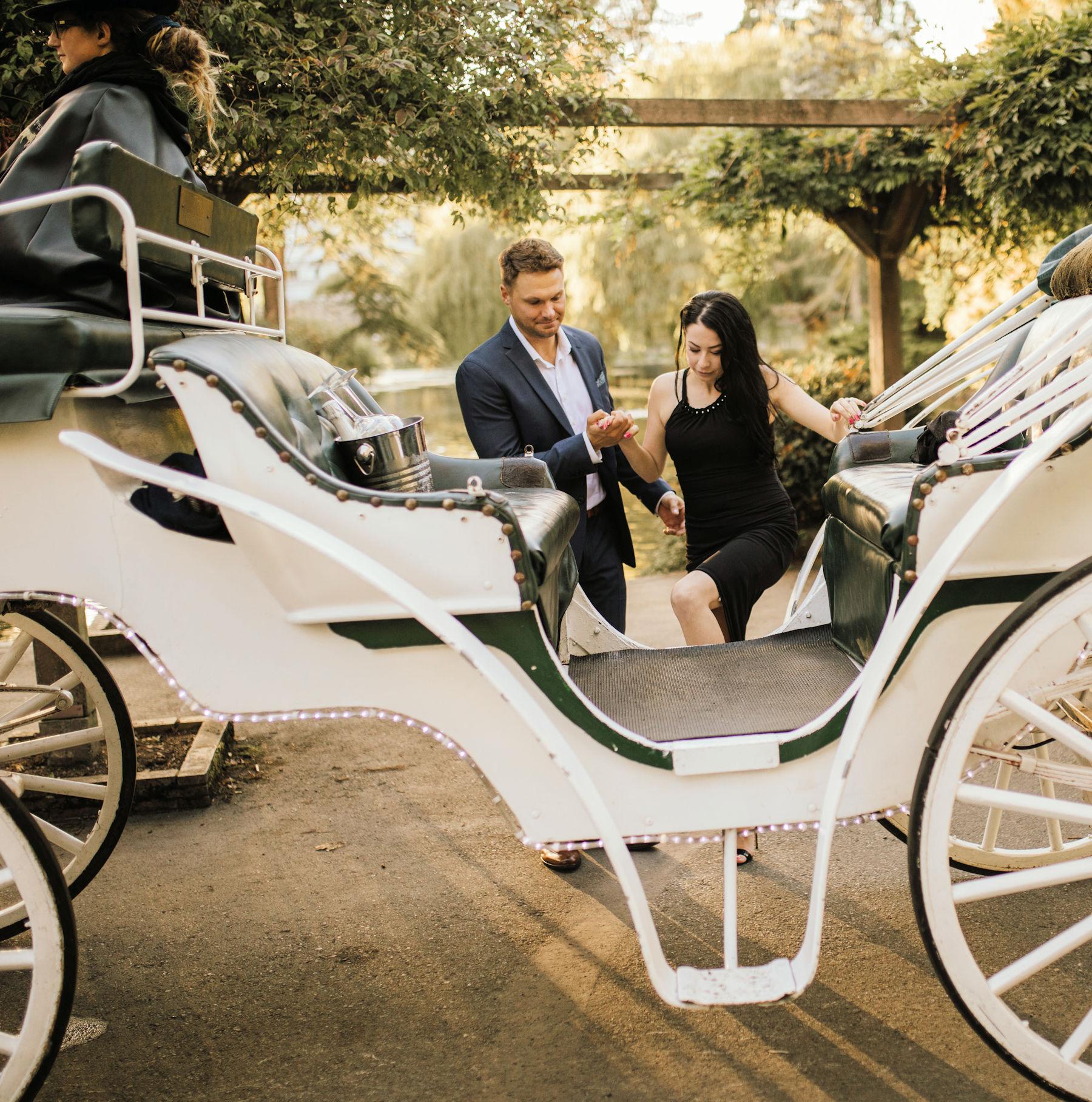 Victoria Carriage Tour Proposal