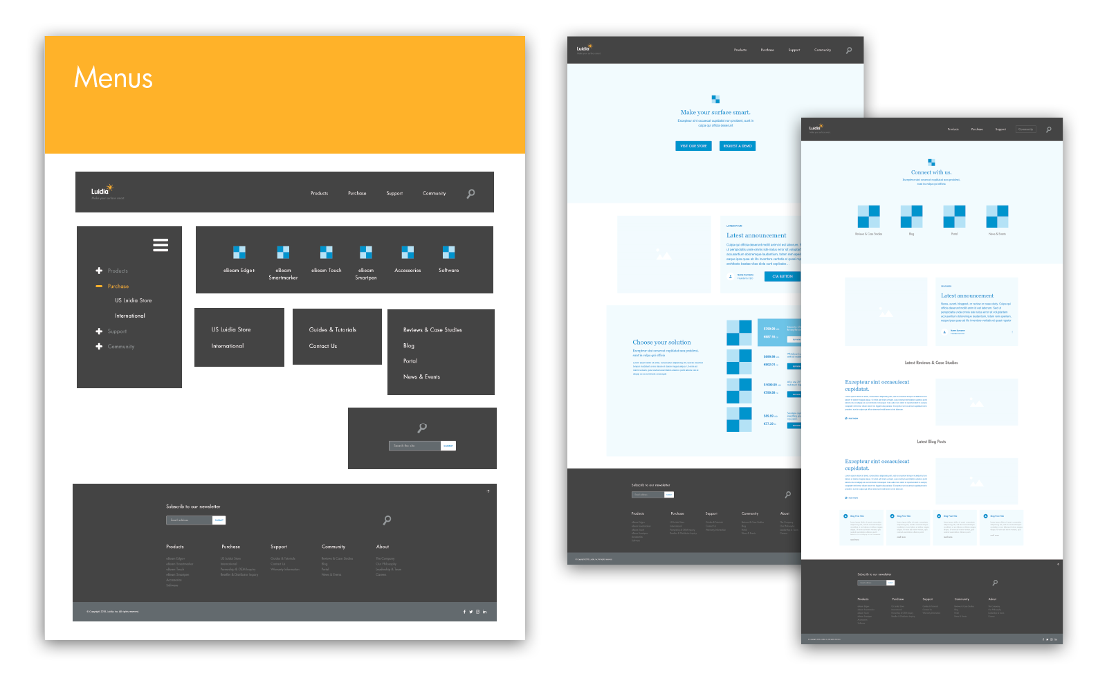 Luidia website wireframe & prototype samples