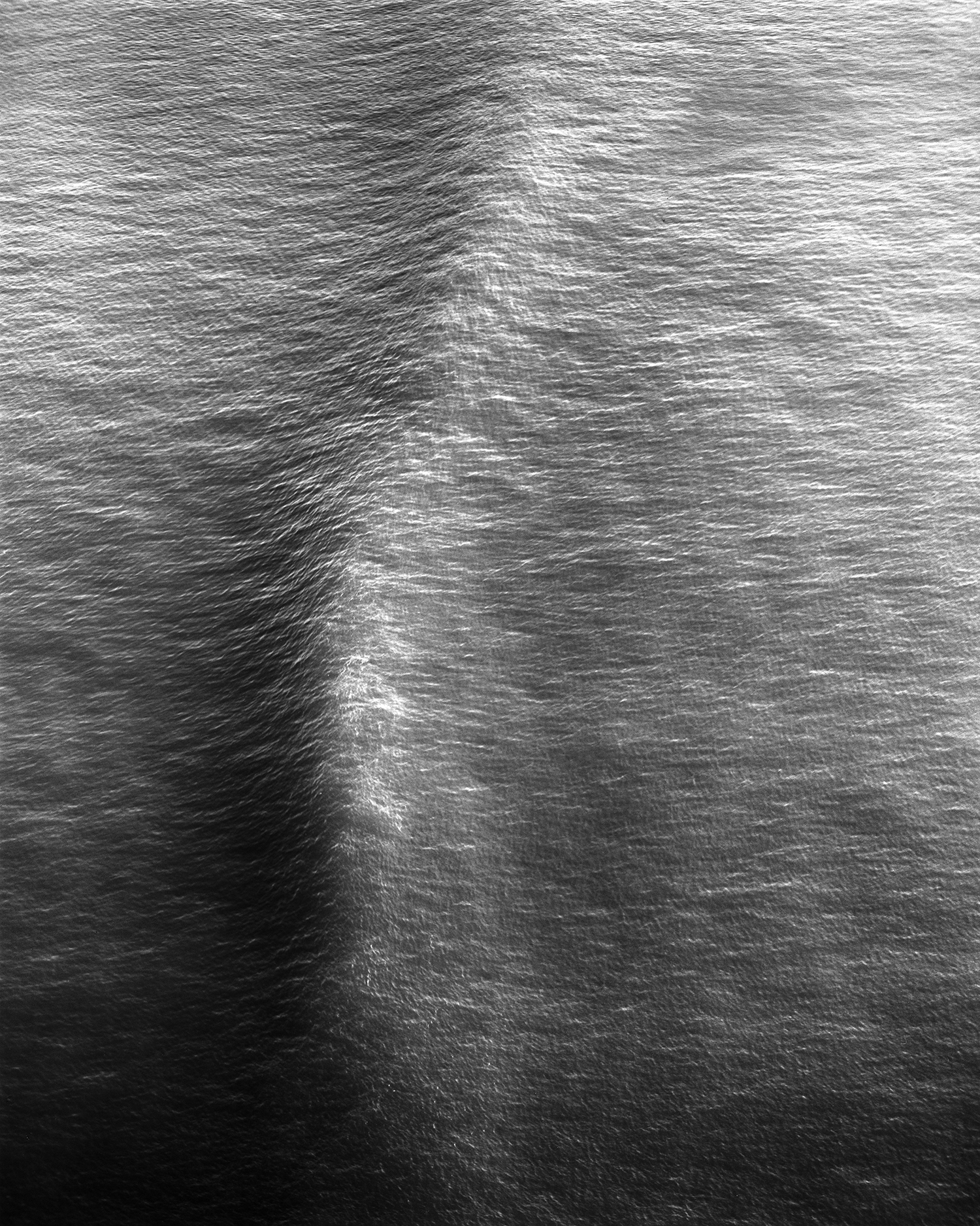 Sea19.jpg