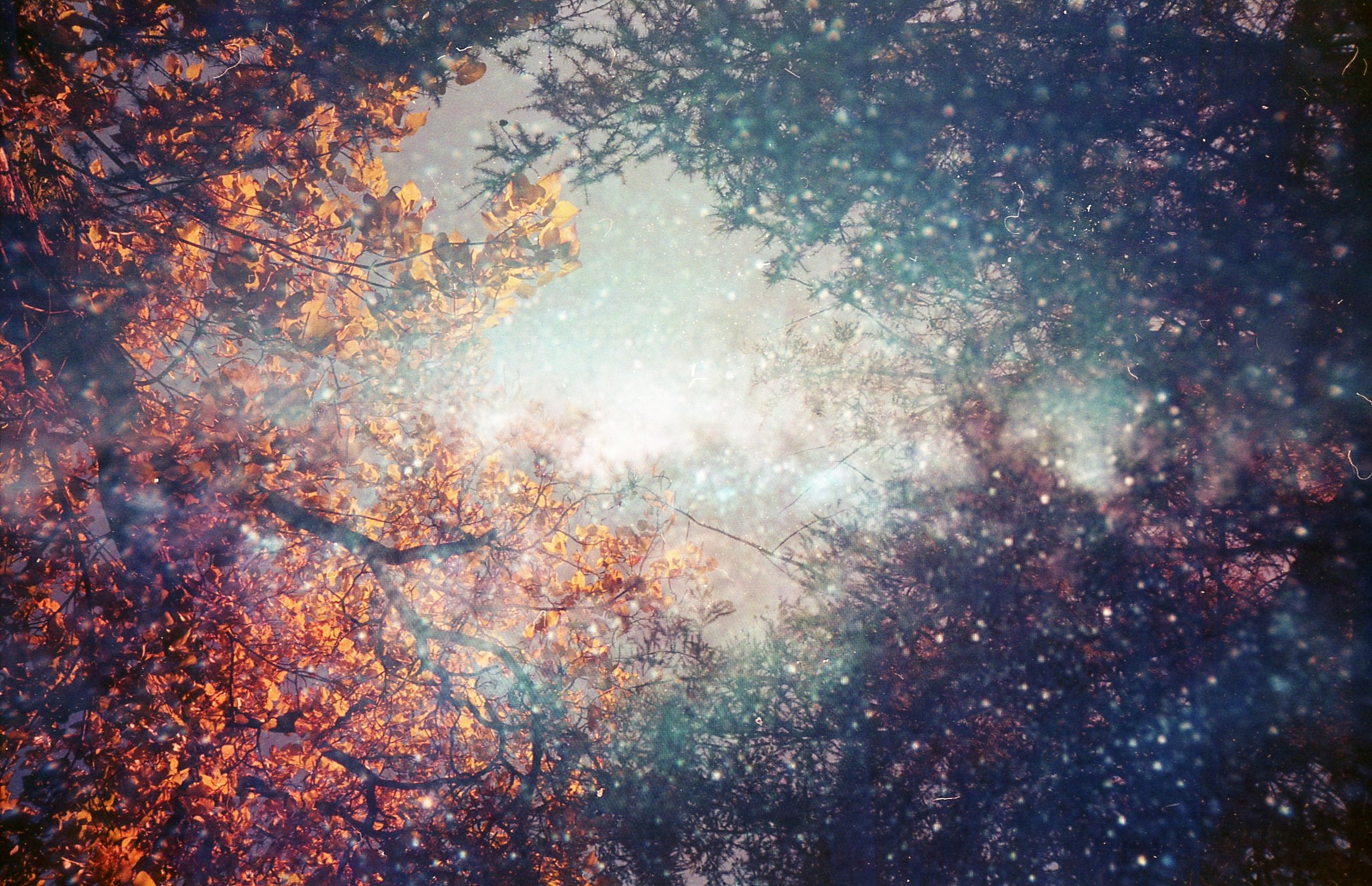 """The Portal"" by Beth Maciorowski"