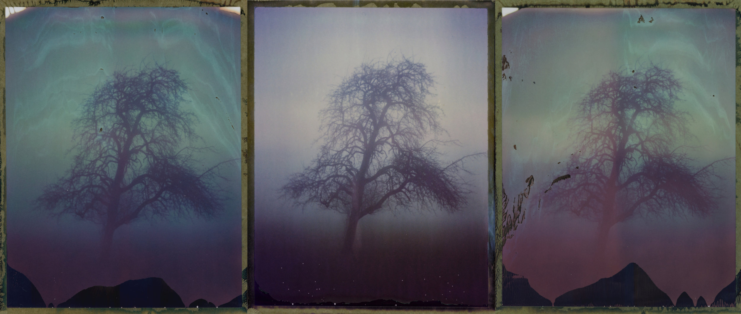 """""""Untitled Triptych"""" by Lukas Taube"""