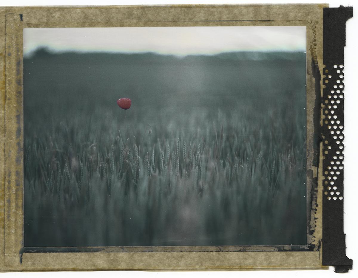 """""""ALONE"""" by Lionel Decourciere"""