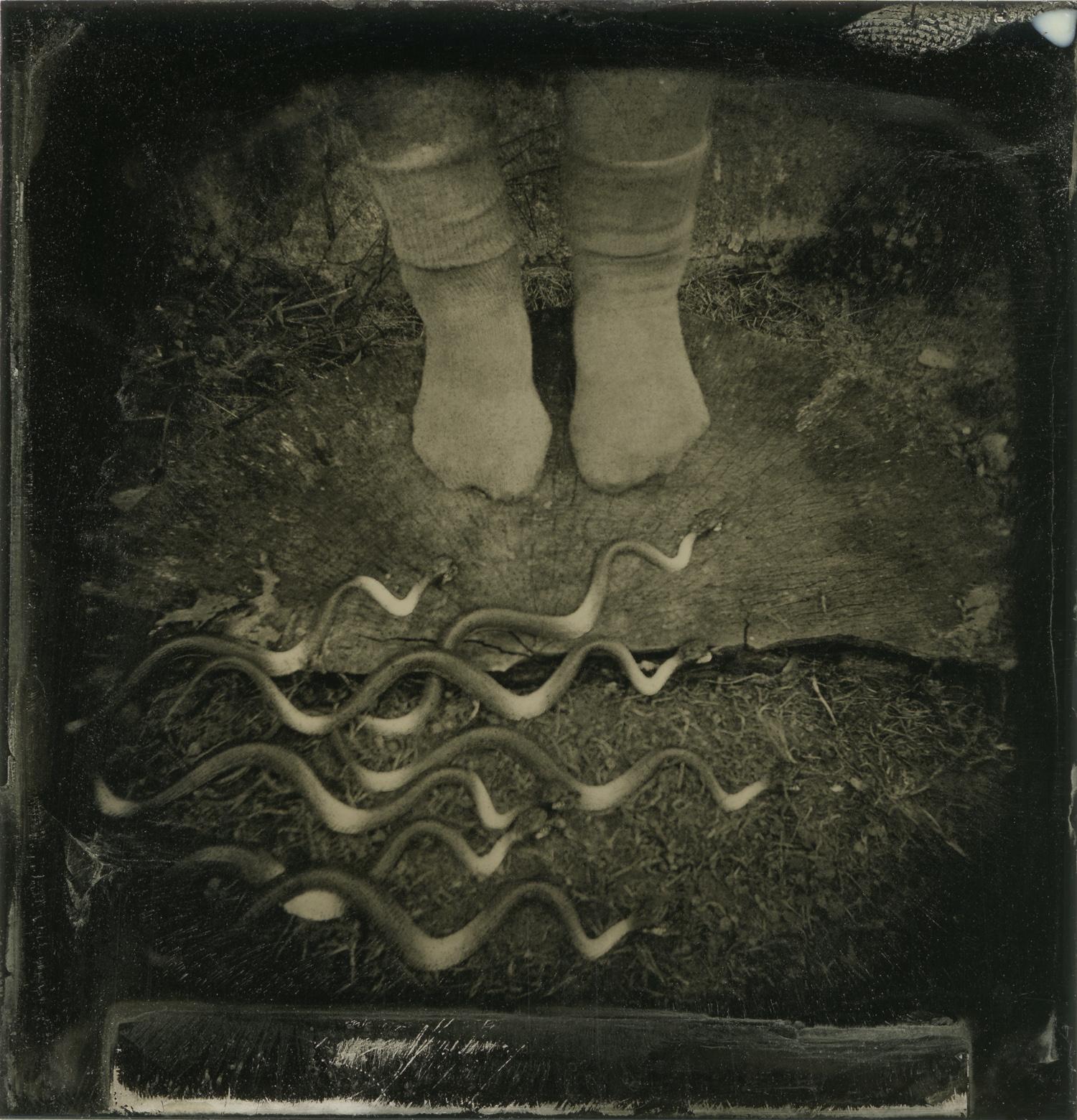 """Snake River"" by Barbara J. Dombach"