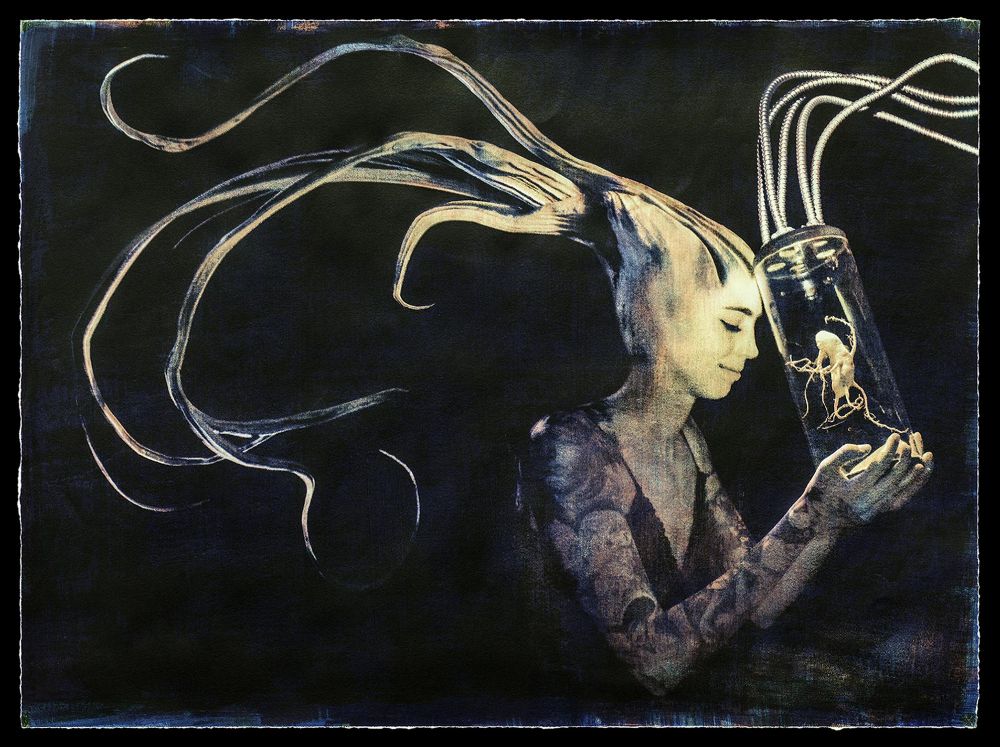 """""""Carapace"""" by Dan Herrera"""