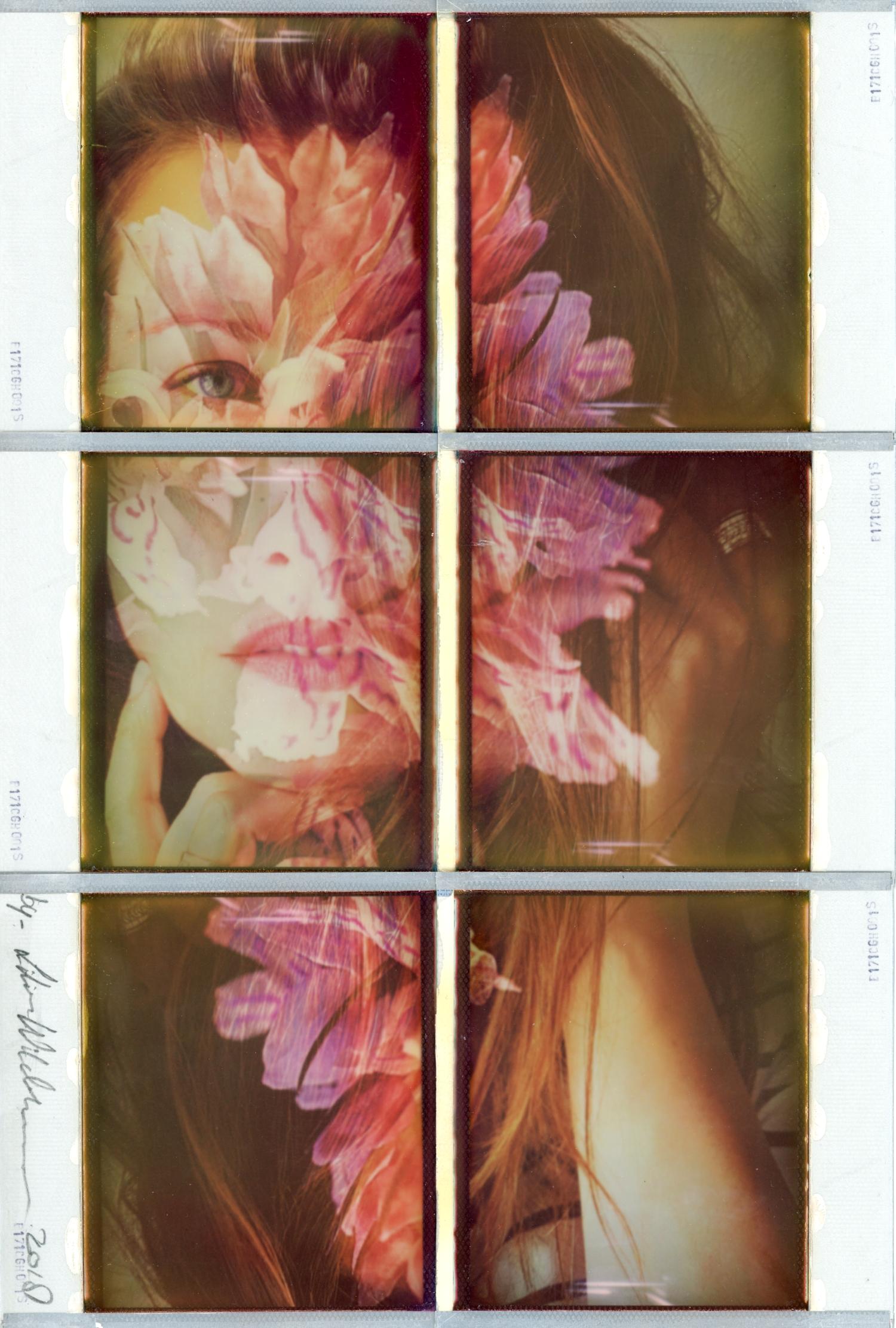 """Were Wild Orchids Grow"" by Lilian Wildeboer"