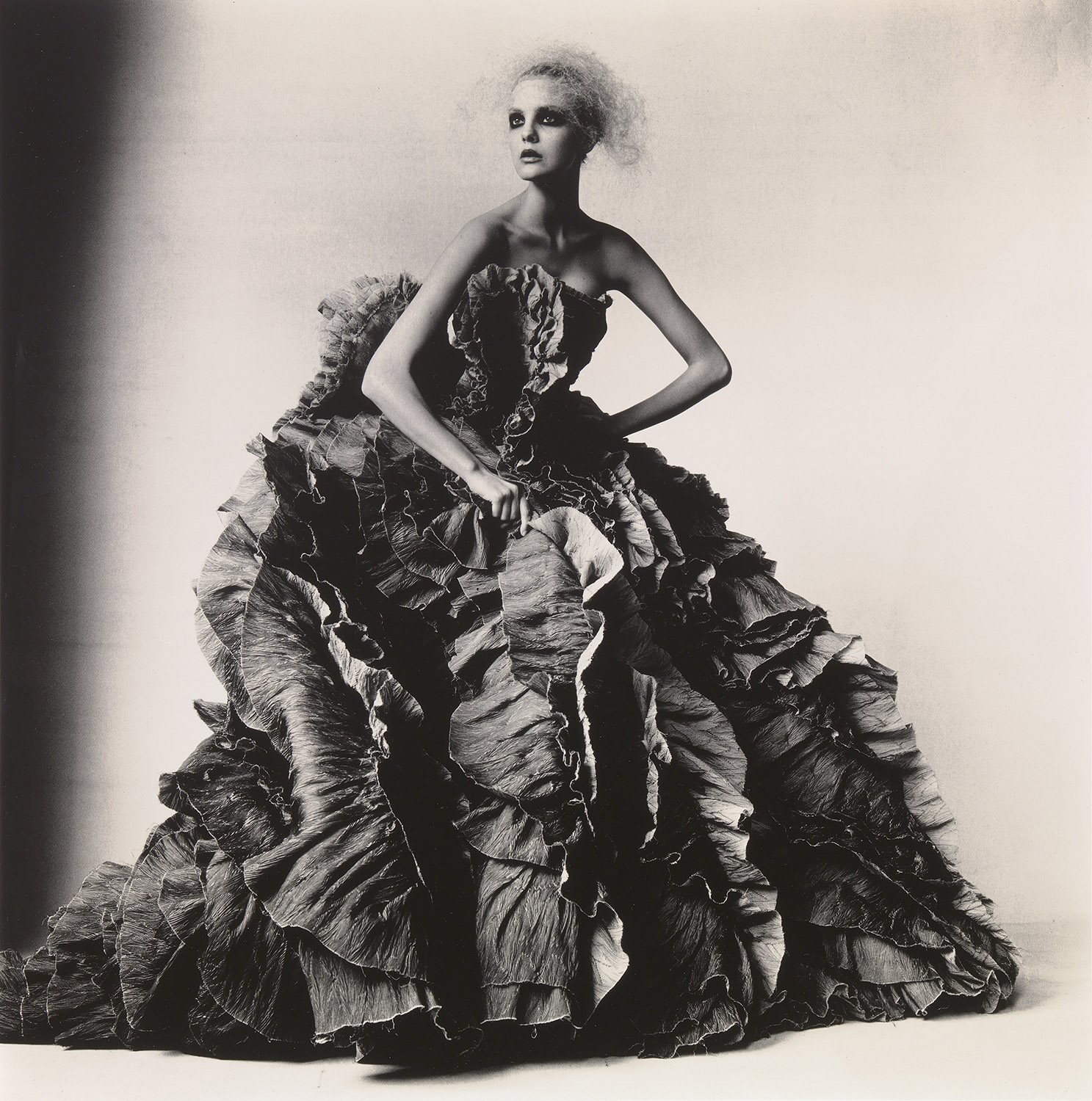Irving Penn, Ball Dress by Olivier Theyskens for Nina Ricci, New York, 2007, Smithsonian American Art Museum, Gift of The Irving Penn Foundation. Copyright © Condé Nast