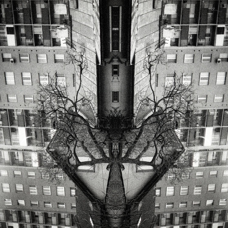 """""""Transformation"""" by Mario Karlovcec"""