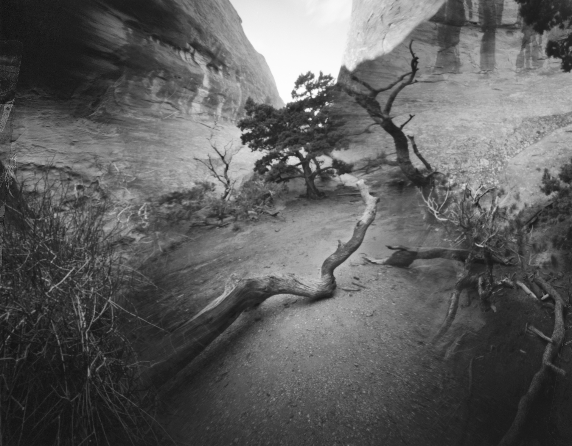 """Devil's Garden, Arches National Park"" by Micheal Butts"