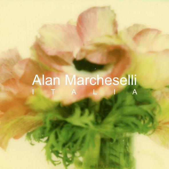 35 Alan Marcheselli.jpg