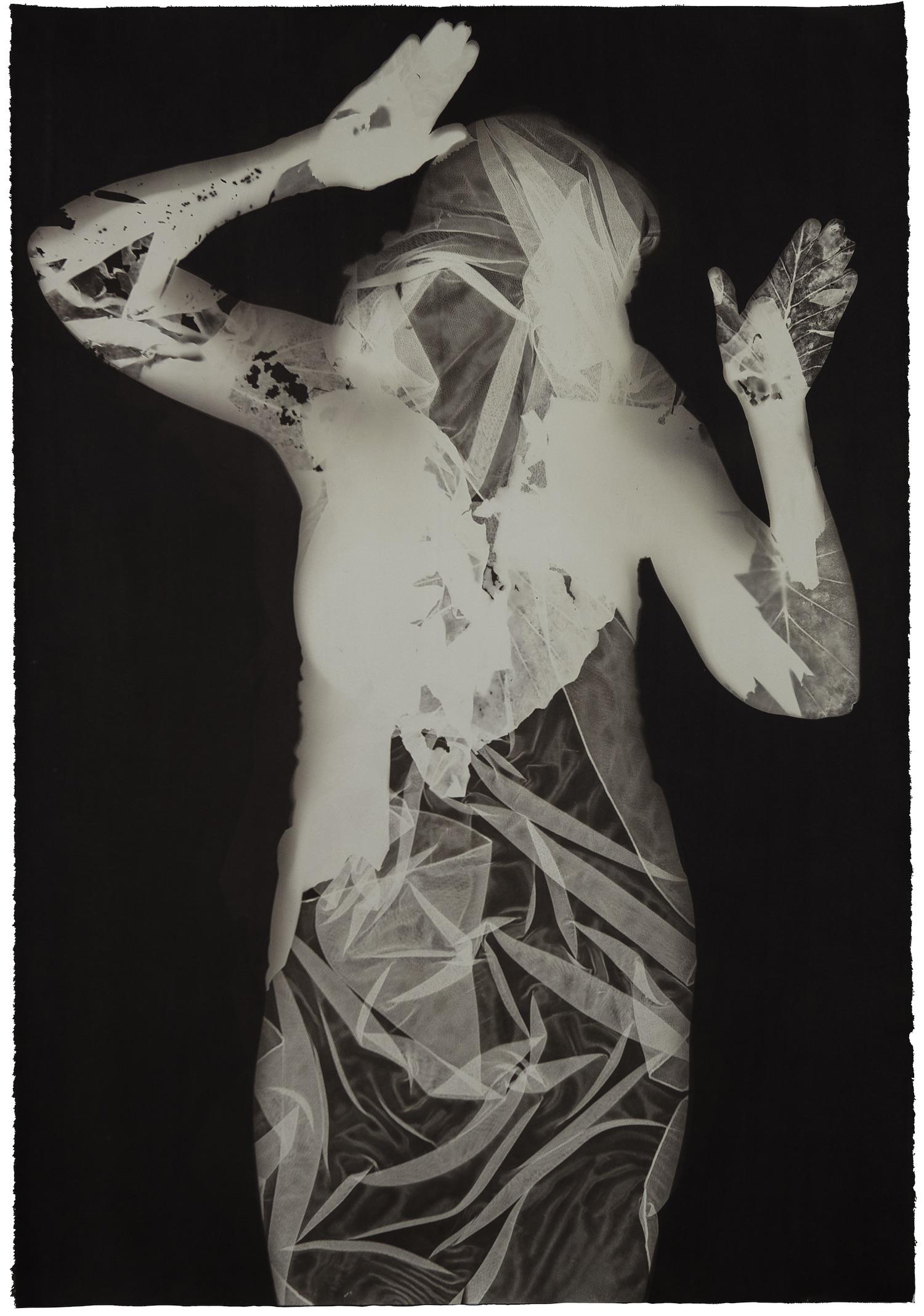 """""""Pleiades Alcyone"""" by V. Elizabeth Turk"""