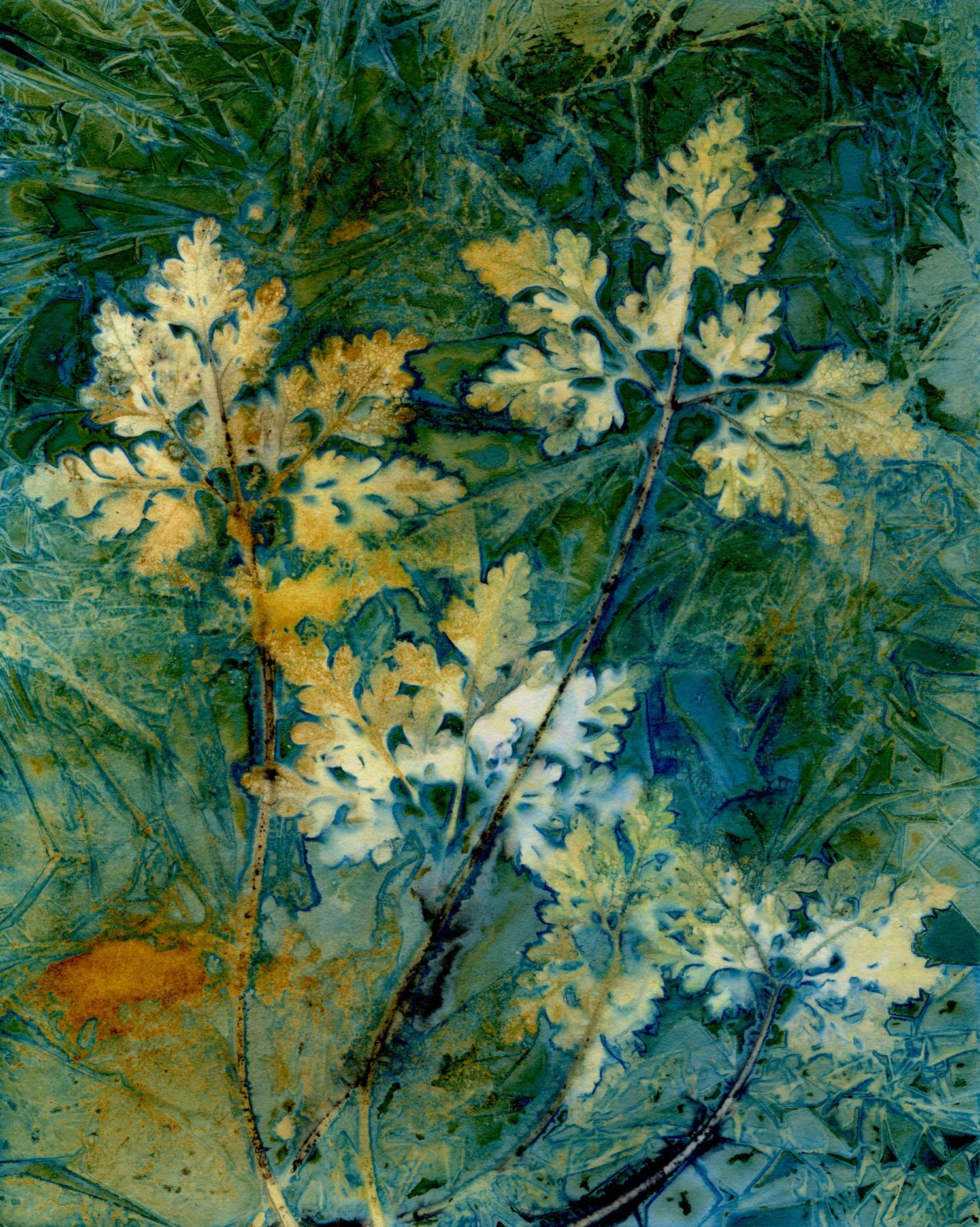 """""""Rusty"""" by Dennis Humphrey"""