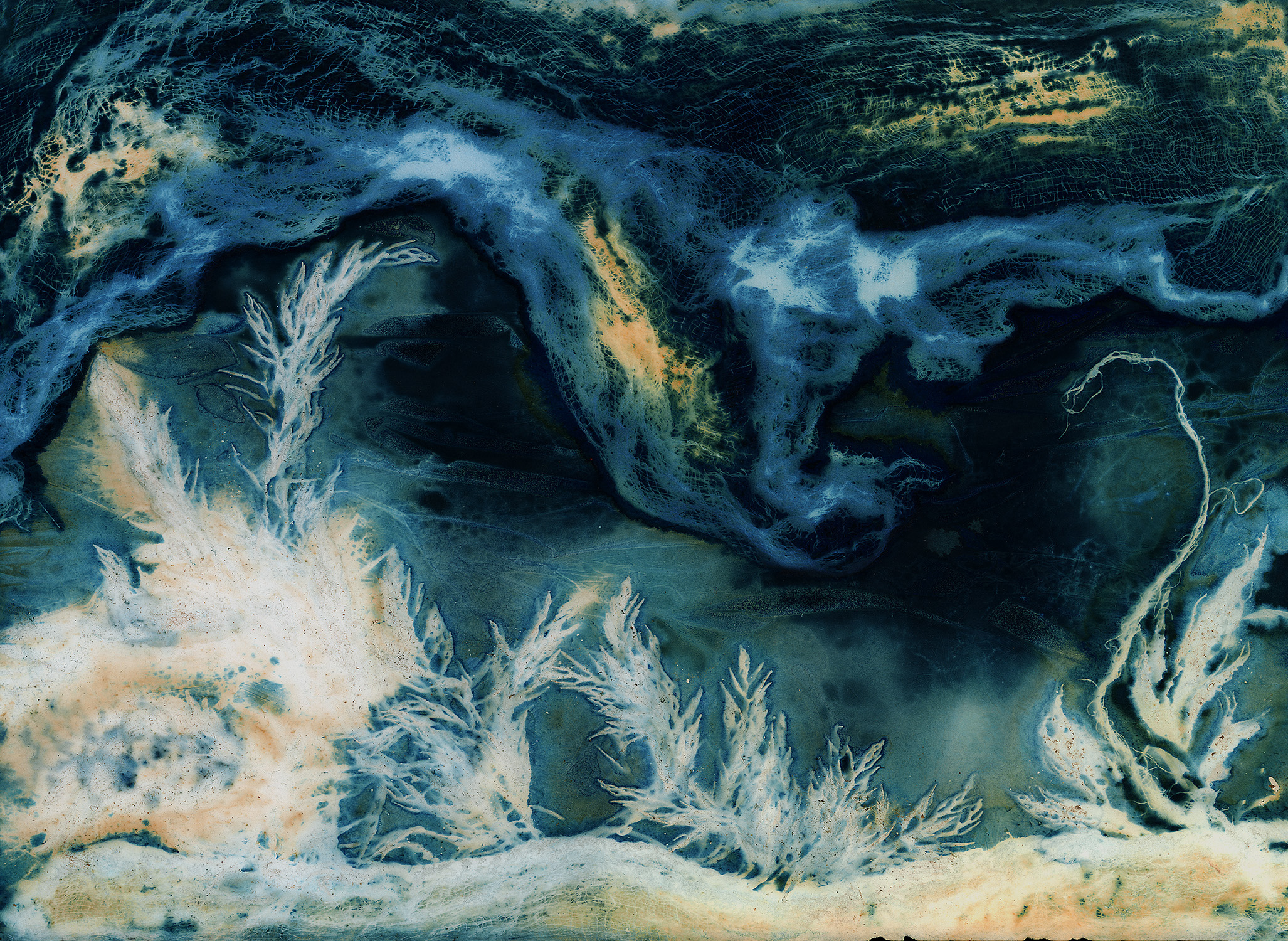 """Under the Sea"" by Heidi Knudsen"