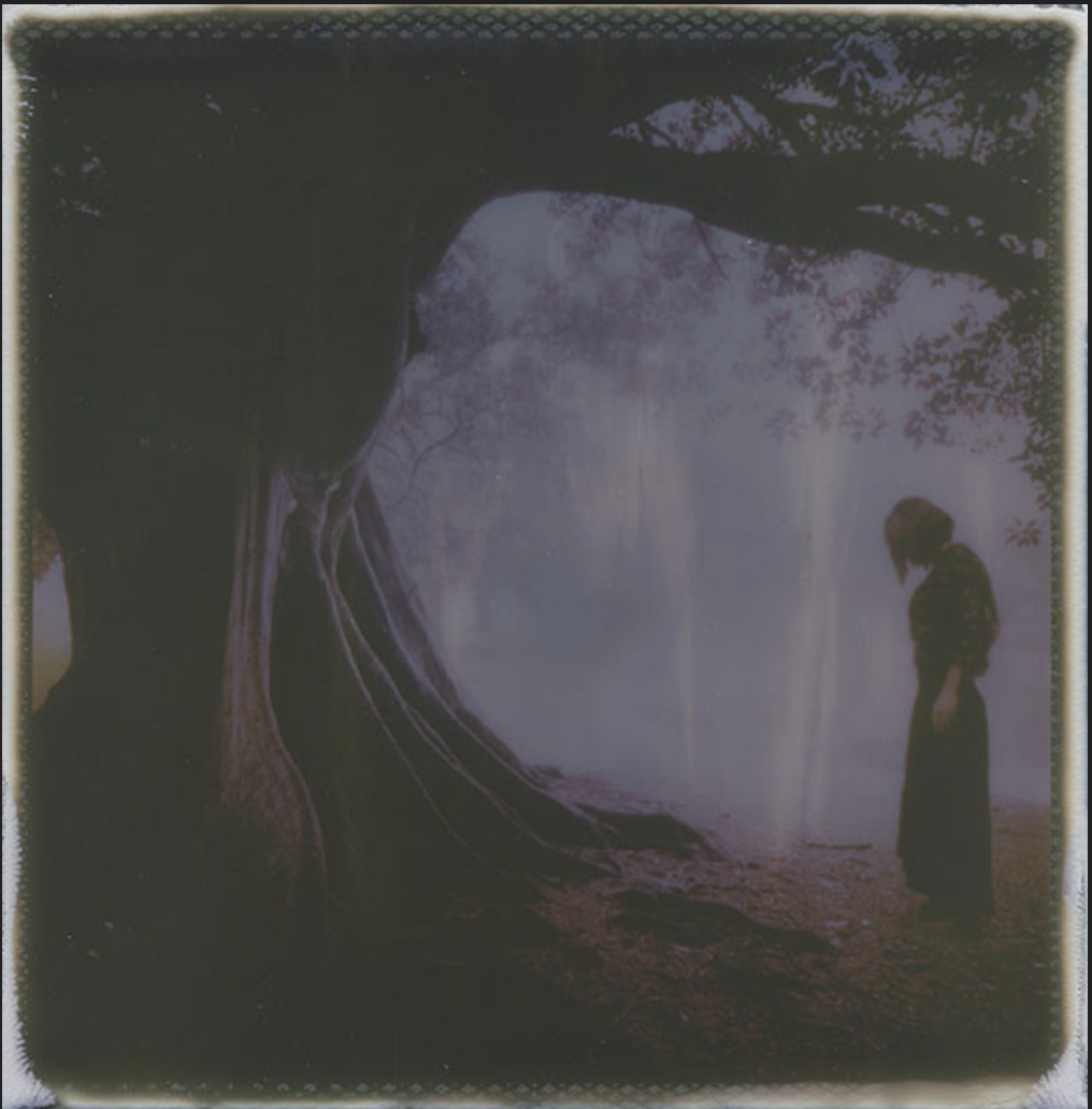 """The Wellsprings of Poetry"" by Amanda Mason"