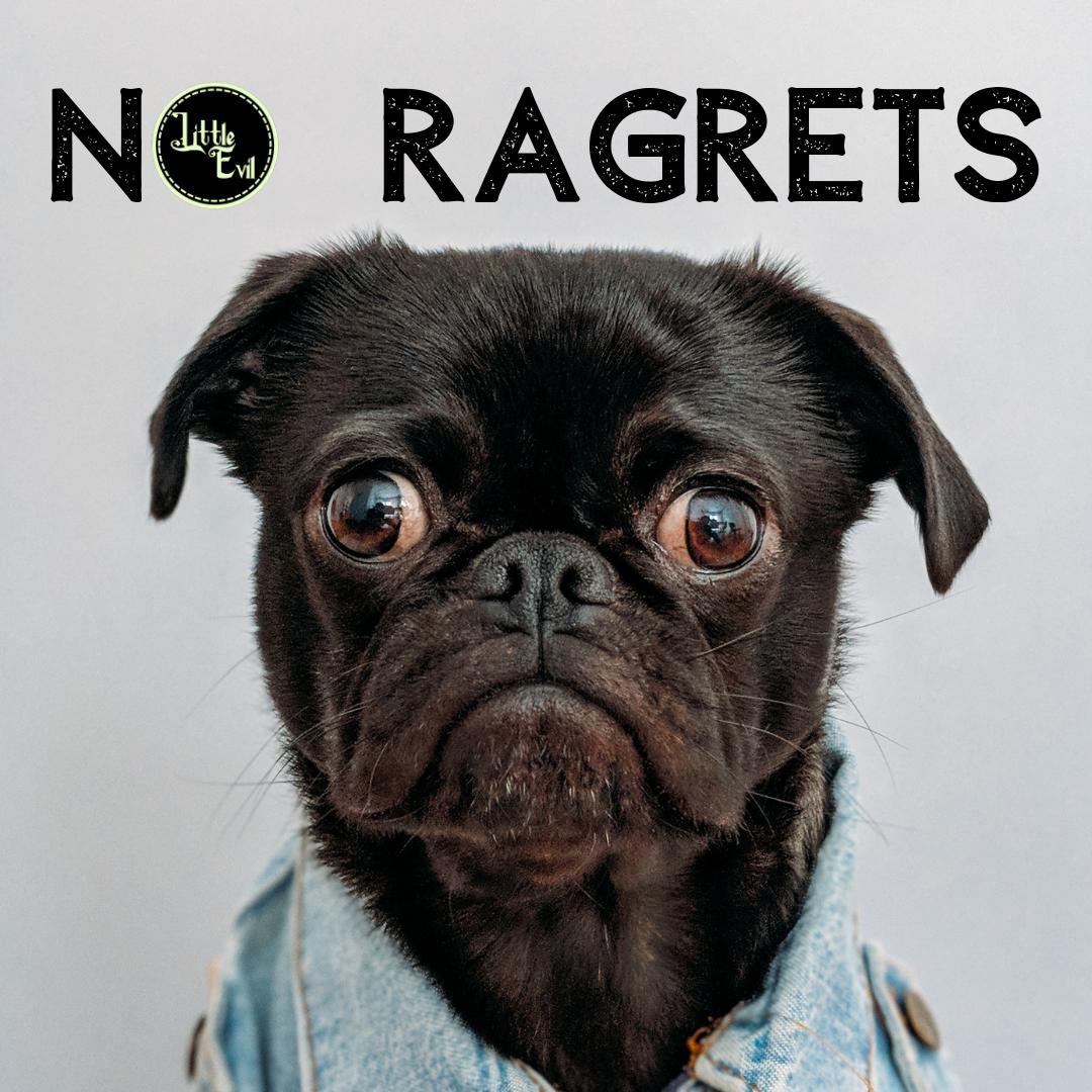 NoRagretsPugCover