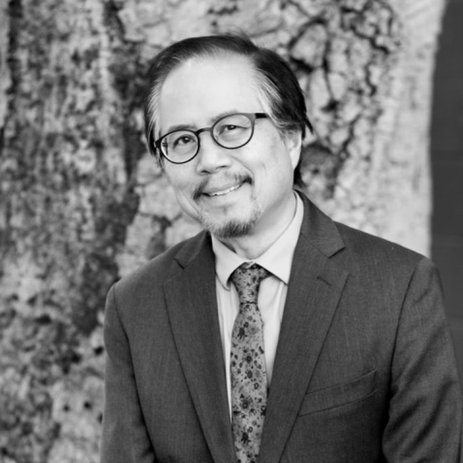 DavidPalumbo-Liu.jpg