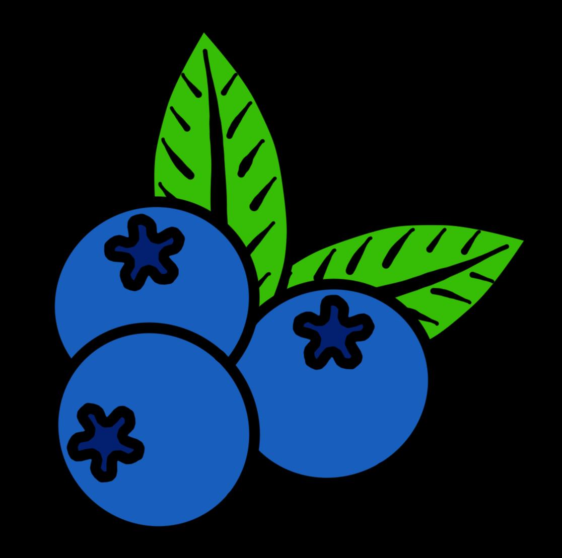 BlueberryLogo.png
