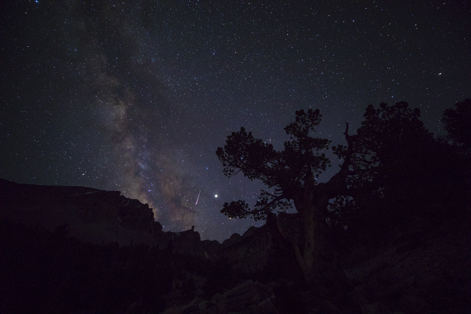 A meteor streaks past Jupiter and the Milky Way in the center of the frame. This is one frame, entirely unprocessed. The final product will show the details of the mountains and the Bristlecone Pine in the foreground, in addition to revealing sharper detail in the night sky.