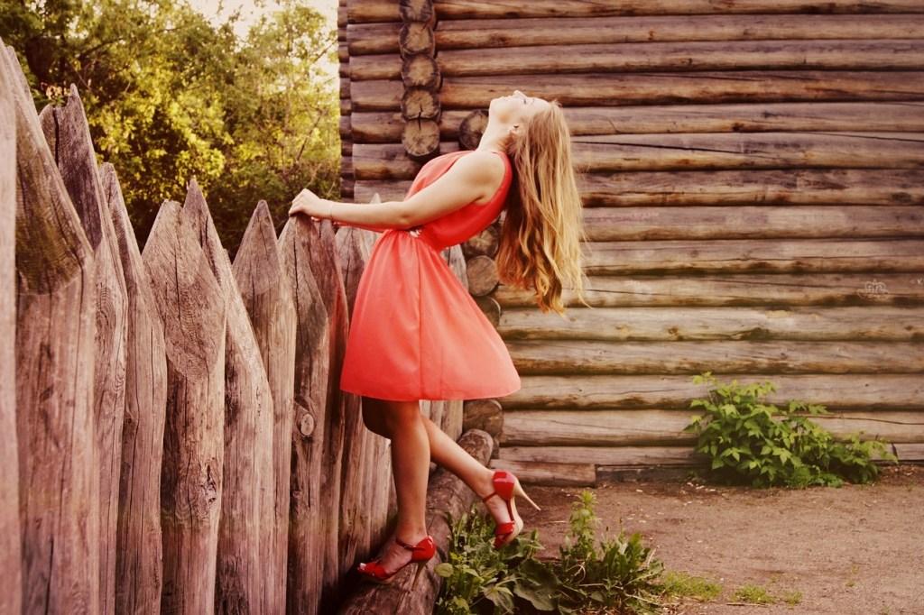 dress-864107_12801.jpg