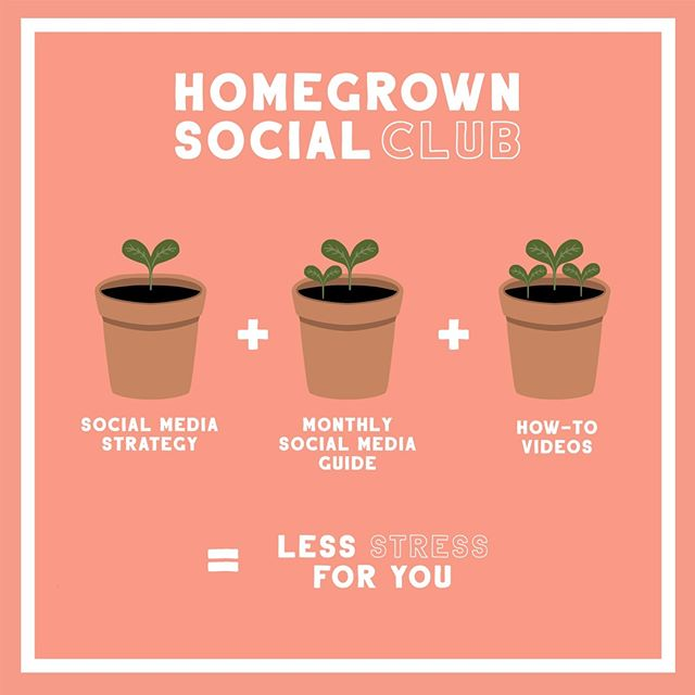 As a small business owner, you've got a lot on your plate. You're also trying to stick to a budget. Don't let social media add stress to your to-do list, join the Homegrown Social Club instead!   The Homegrown Social Club is affordable social media assistance for small business owners.   You'll get the tools and resources you need to grow your business without breaking the bank.   Today is the LAST day to get 50% off your first month by using the code: FALLINGFORSOCIAL - Click on the link in my bio to learn more!  Questions? Send me a direct message, I'd to chat with you!       #smallbusinessstrategy  #socialsociety  #keepsocialmediasocial #digitalmarketingtips #digitalstrategy #marketyourbiz #creativesocialmedia #amplifyyourbrand #SmallBiz #Successfulsocialmedia #socialmediatips #socialmediamanager #smallbusinesslove