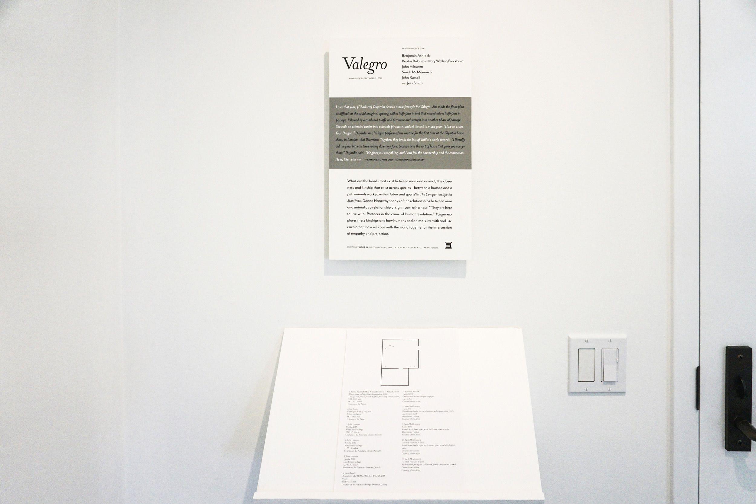 valegro-2500w0012.jpg