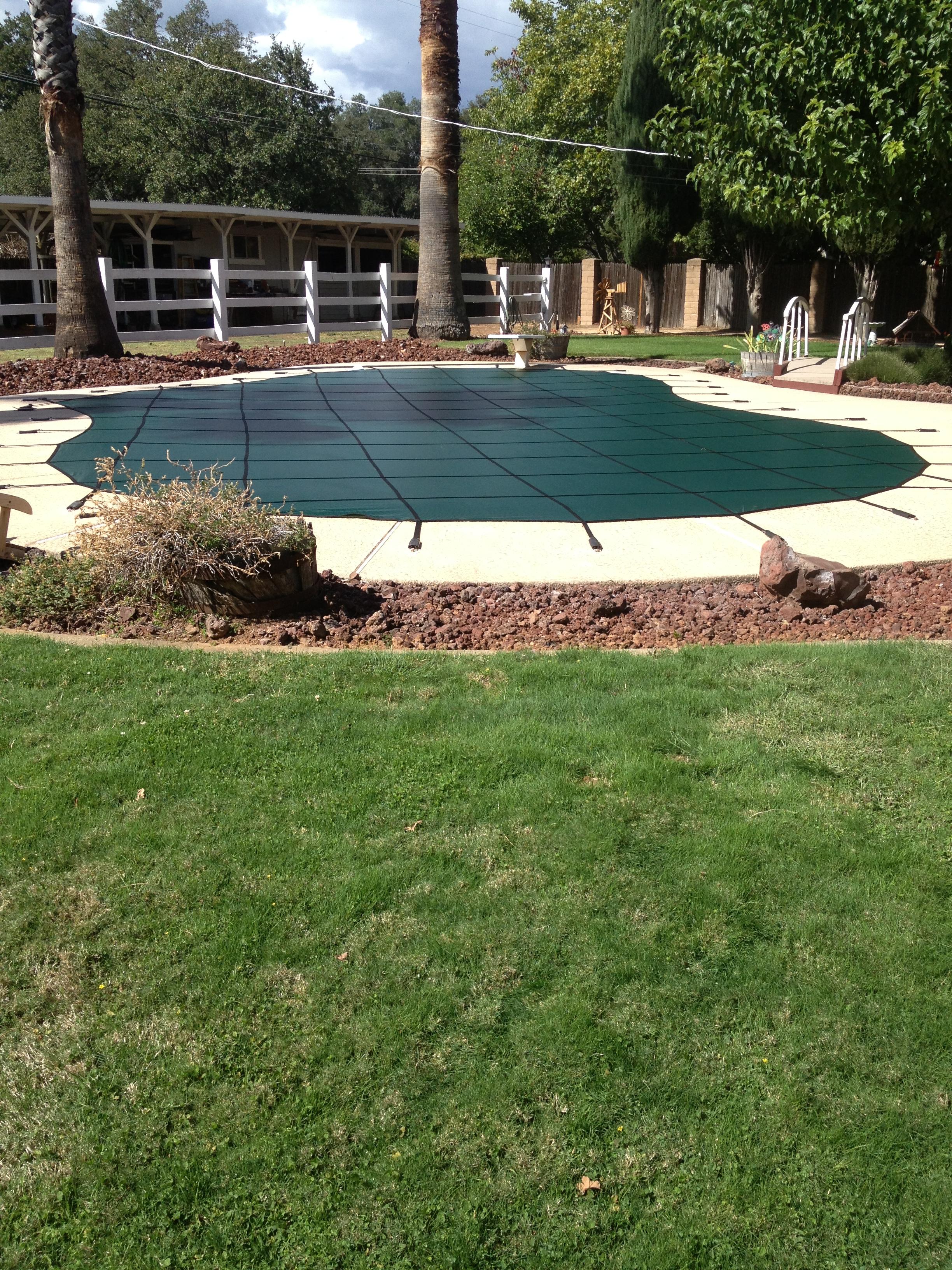 Pool Cover_1.jpg
