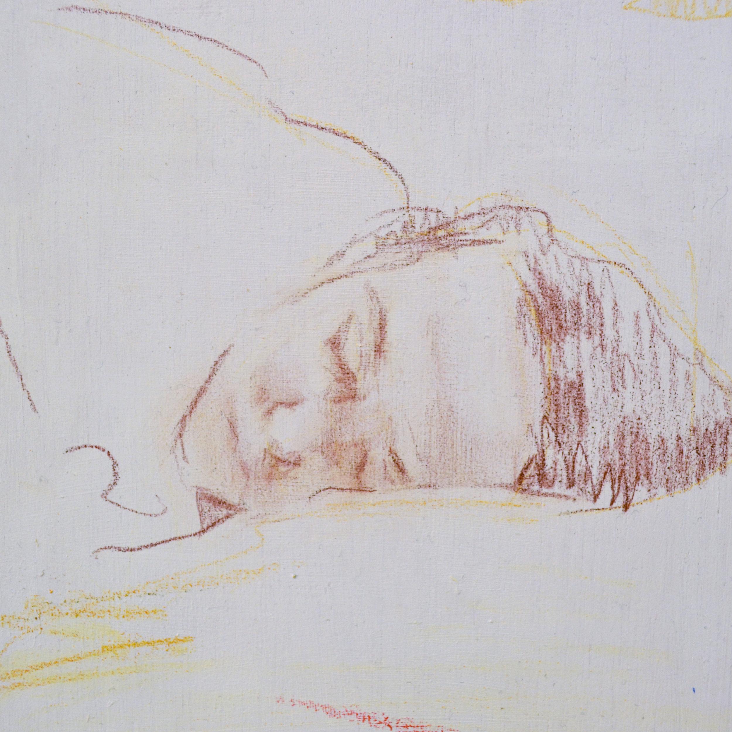 Sleep_closeupB03.jpg