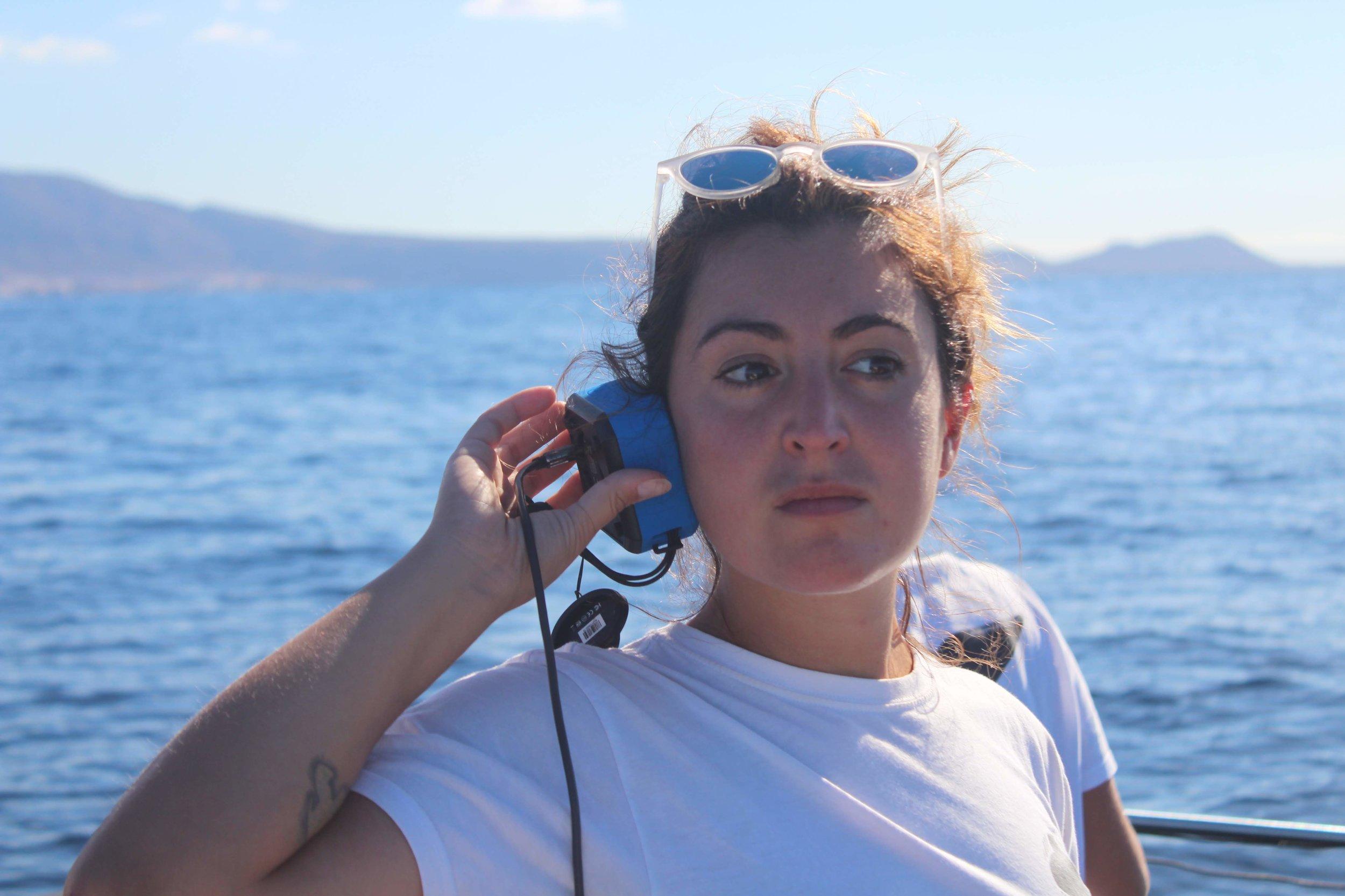 RIB-veneen kyydissä kuunnellaan delfiinien ääniä