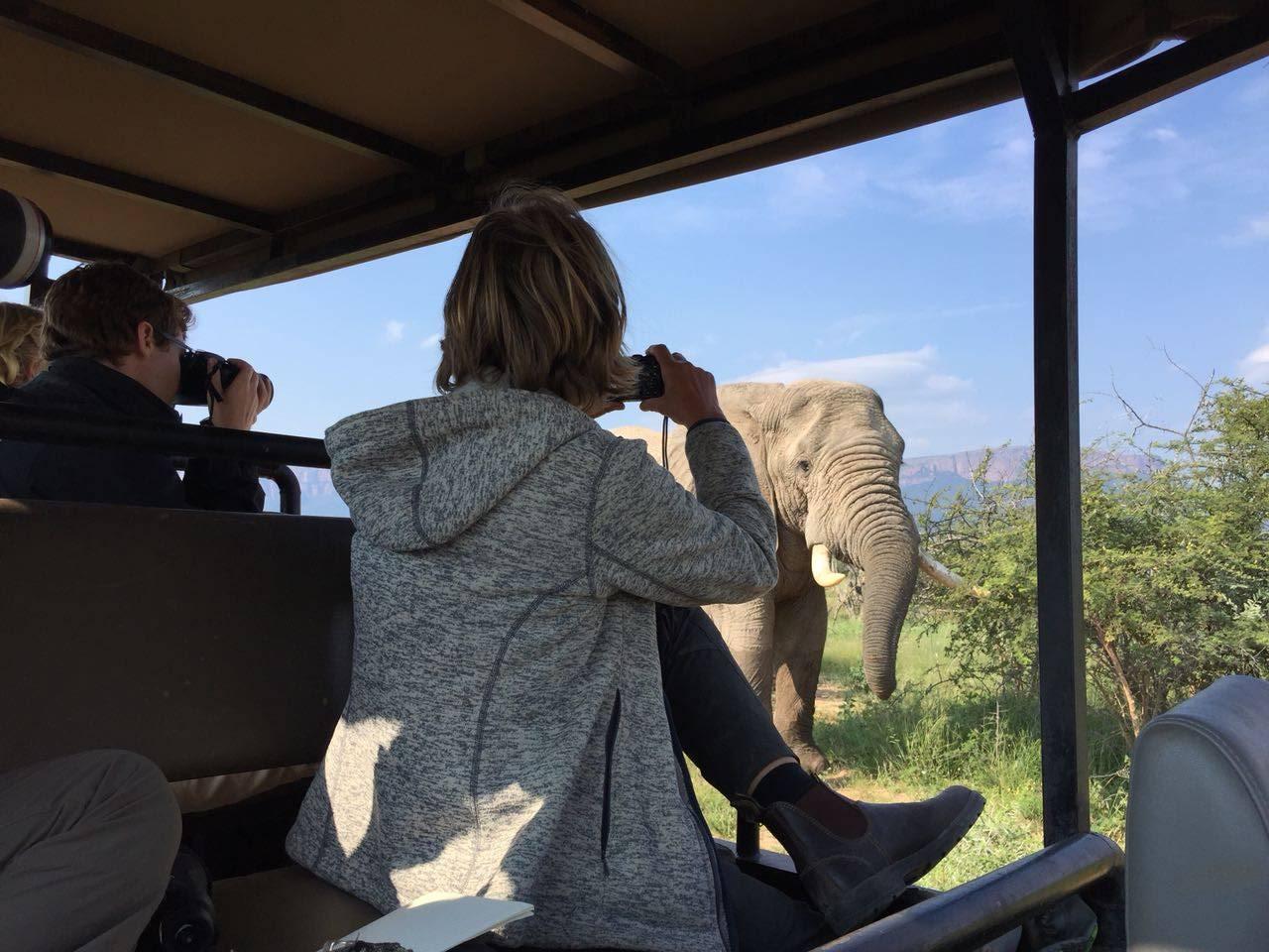 Ekomatkaajat pelasta norsu.JPG